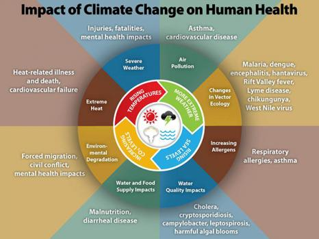 www.cdc.gov/climateandhealth/images/climate_change_health_impacts600w.jpg